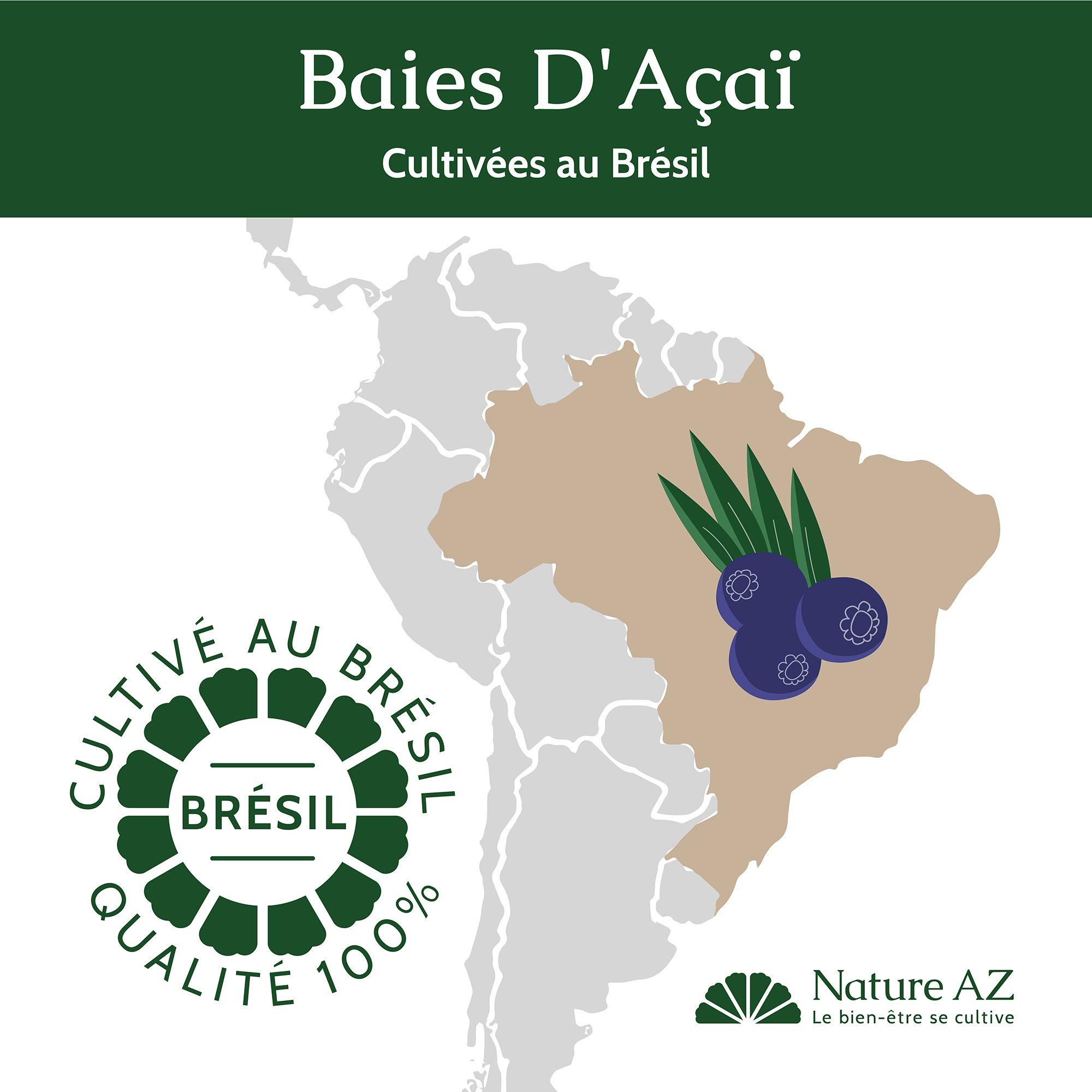 Baies acai brésil