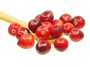 cranberry_natureAZ
