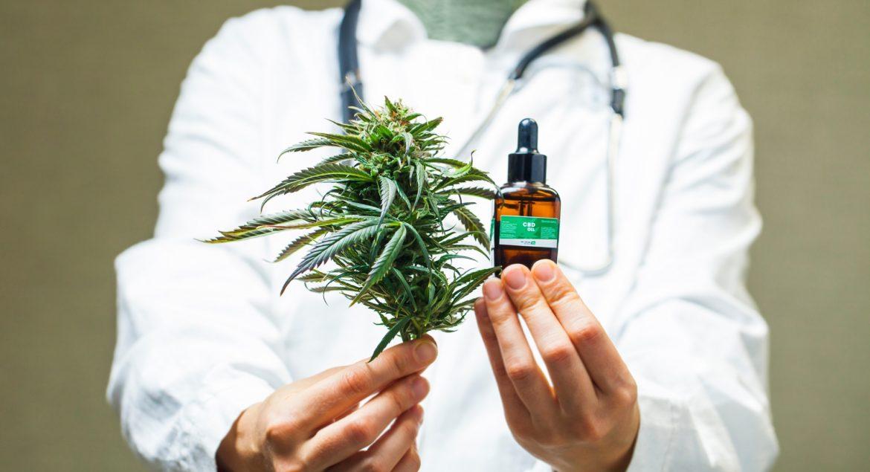 Le cannabis: bon ou mauvais pour le cerveau vieillissant?_5f157aedd30c3.jpeg