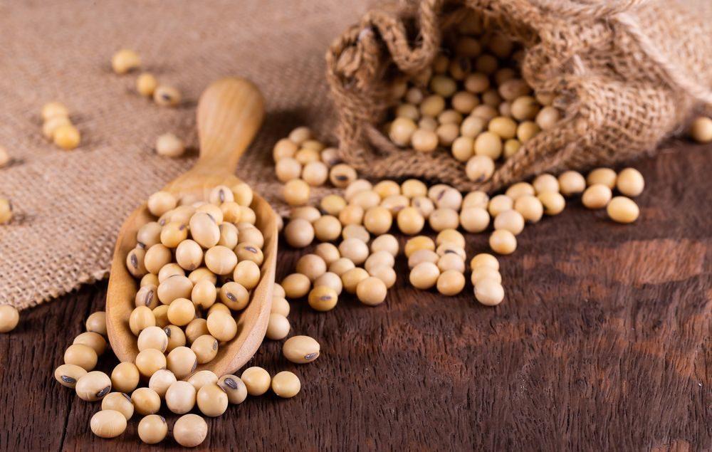 Top 10 des bienfaits du soya pour la santé_5f2beb5d20c86.jpeg