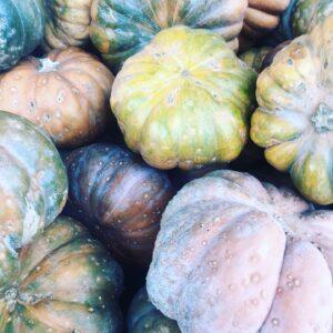 légumes fruits de saison automne, Les légumes et fruits de saison à l'automne